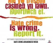 Hate Crime Social Media Panel  engwel