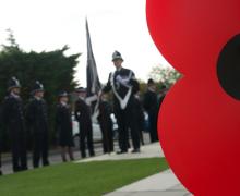 Remembrance Day + poppy