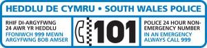 SWP 101 logo
