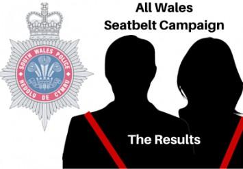 Seatbelt Results
