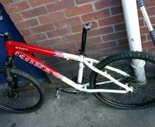 ely stolen bike 1